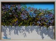 La siepe di Bouganville - olio su tavola 19x26cm